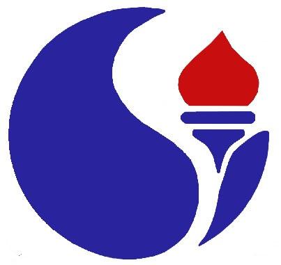 شرکت توسعه صنایع نفت و گاز سرو